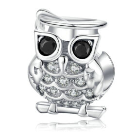 Wise Old Owl Charm